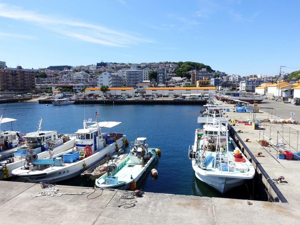 【釣り場紹介】塩屋漁港の釣りポイント・アクセス・釣れる魚種まとめ