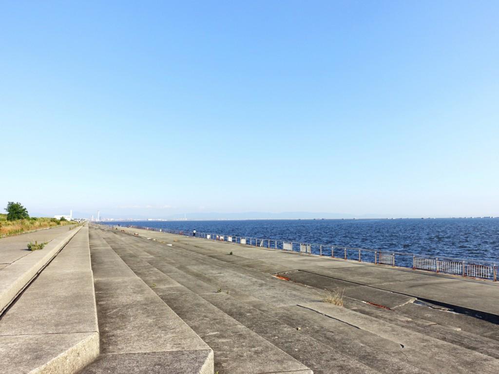 【釣り場紹介】甲子園浜の釣りポイント・アクセス・釣れる魚種まとめ