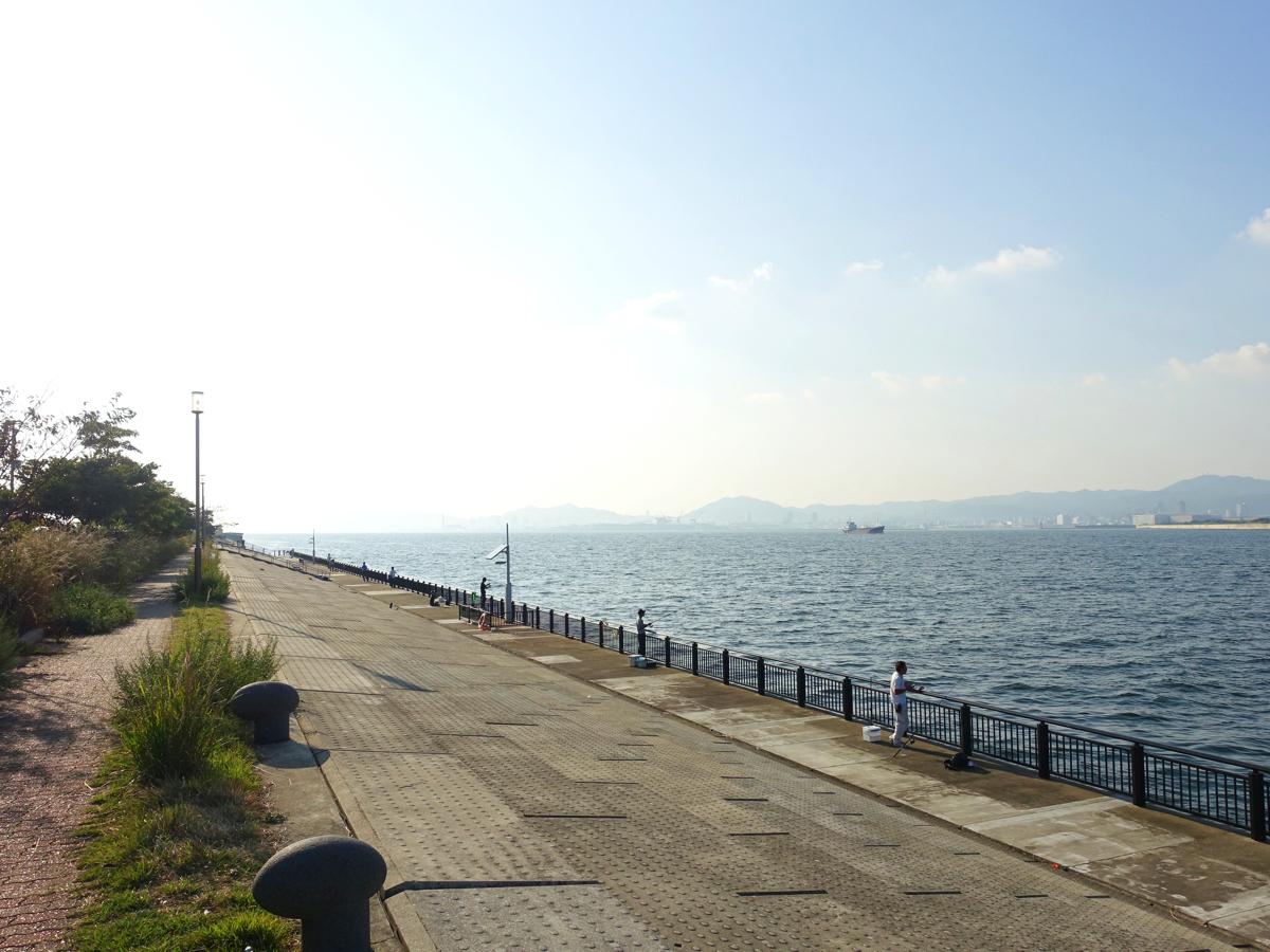 【釣り場紹介】神戸空港ベランダの釣りポイント・アクセス・釣れる魚種まとめ